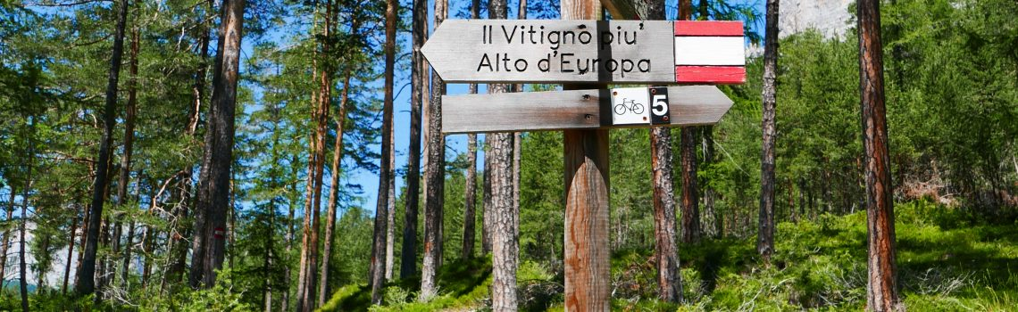 Vigna 1350 - the highest vineyard in Europe